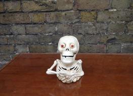 Skeleton bank