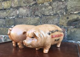 Pig bank Quaker City
