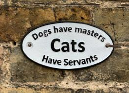 cats have servants sign